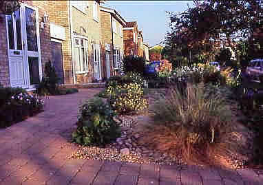 "front garden paving, Tegula Paving, Carex ""Bronze Form"", scree bed"